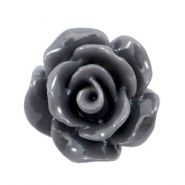 Perles roses shiny 10mm gris anthracite